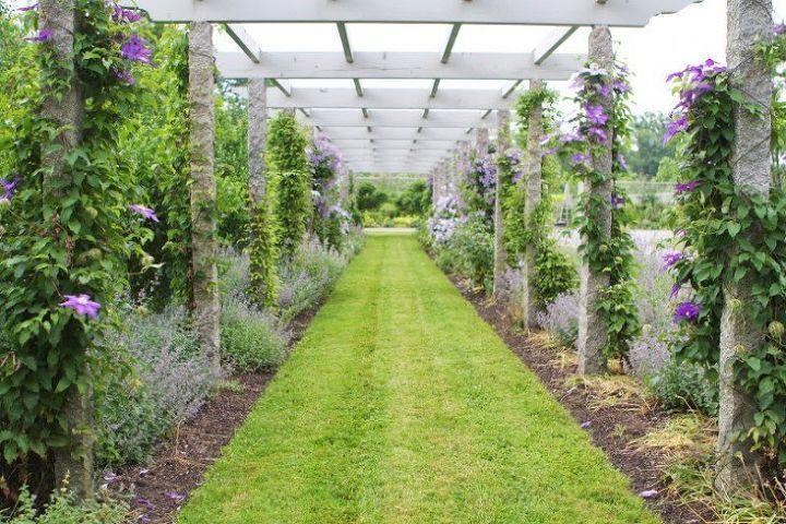 Photo via [url=http://www.gardenista.com/posts/martha-stewarts-secrets-9-best-flowering-clematis-vines]Gardenista[/url]
