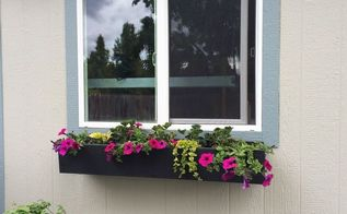 how to plant a window box, container gardening, flowers, gardening
