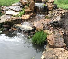 pond renovation and updating, ponds water features