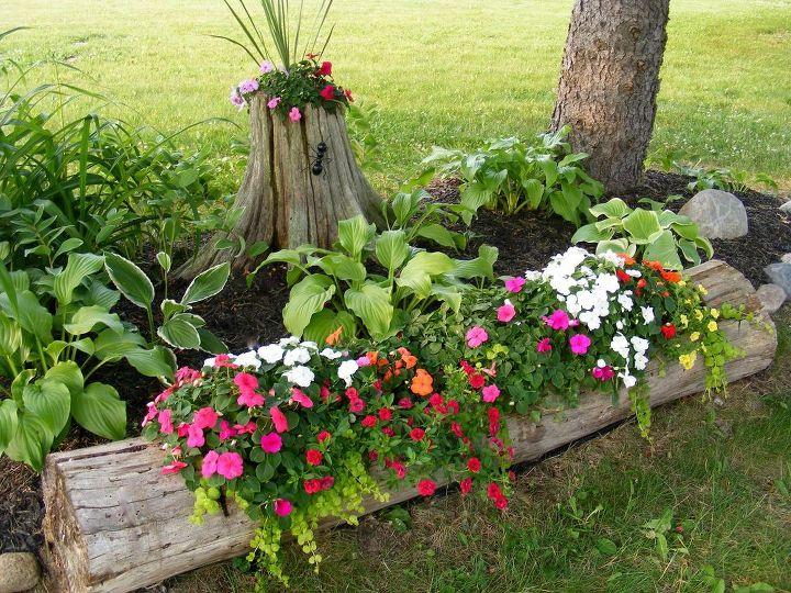 tree stump log, fences, gardening, pest control