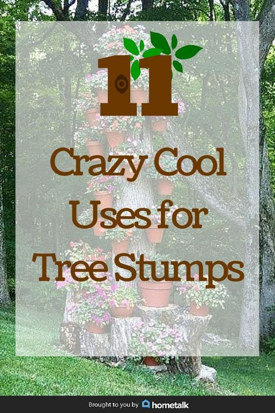 11 pictures of crazy cool uses for tree stumps, outdoor furniture, outdoor living, repurposing upcycling, woodworking projects