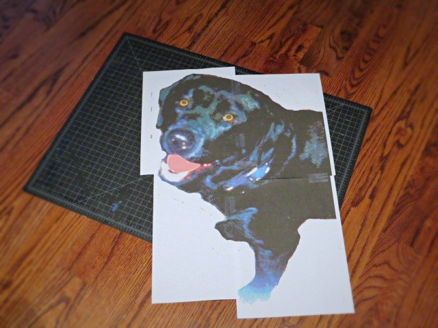 how to make a paint by numbers ish pet portrait, crafts, how to, wall decor