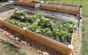 four square garden, diy, gardening, raised garden beds, Bed 1