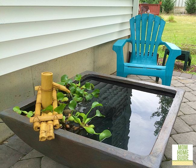soothing backyard pond with fountain, ponds water features