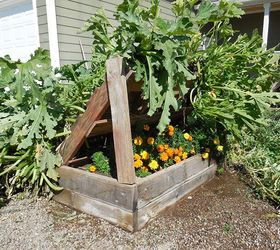 Exceptional Squash Growing Racks Made Out Of Pallets, Diy, Gardening, Pallet,  Repurposing Upcycling