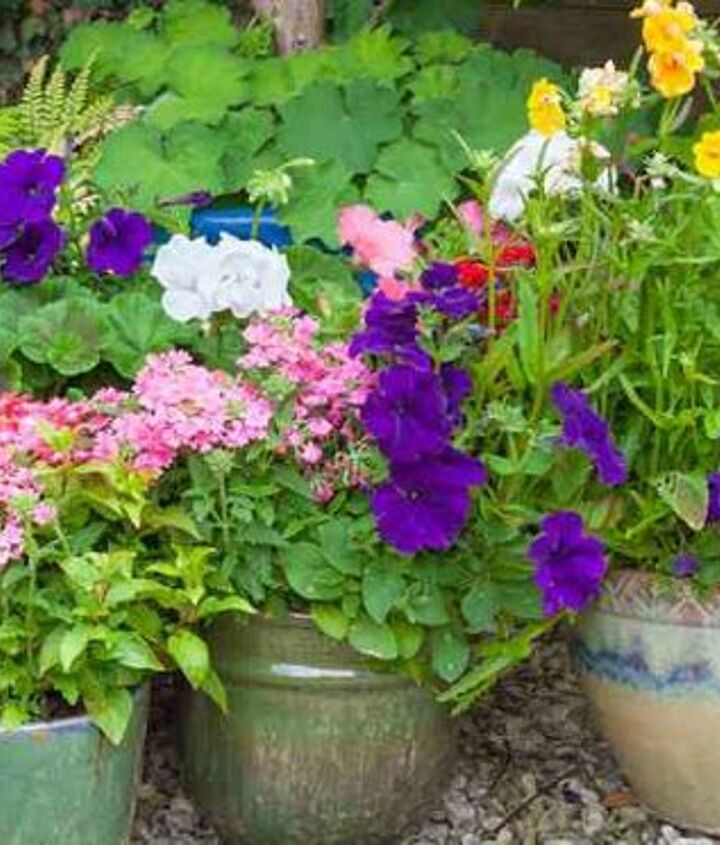 check out these 4 easy steps to creating a beautiful container garden, container gardening, gardening