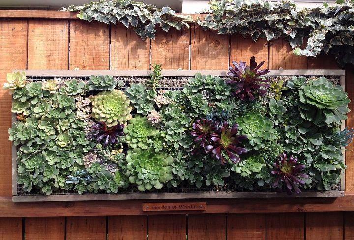 pallet wood vertical planting, gardening, pallet, repurposing upcycling, succulents