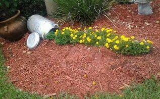 my milk can garden, flowers, gardening, repurposing upcycling