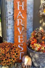 harvest barnwood sign for fall, crafts, seasonal holiday decor