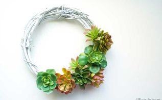 diy faux succulent wreath, crafts, seasonal holiday decor, succulents, wreaths