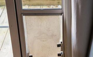 how to keep the cat from using the dog door diy dog door hack, doors, home maintenance repairs, how to, pets animals