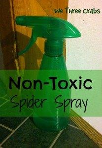 nontoxic spider spray, pest control