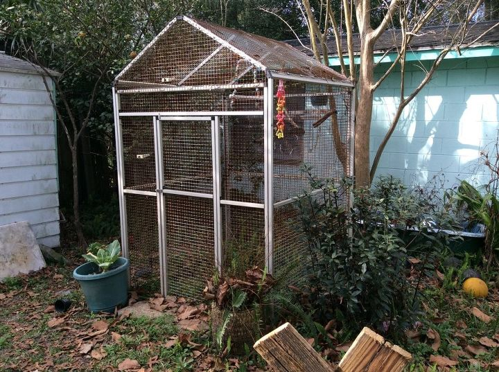q opinions please outdoor aviary or greenhouse, gardening, outdoor living