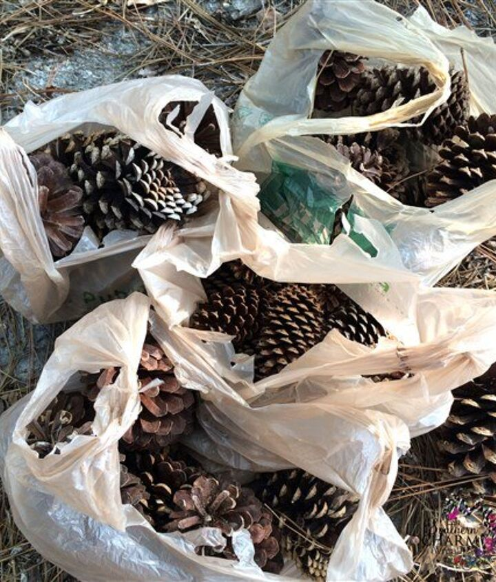how to prepare pine cones for wreaths, crafts, how to, seasonal holiday decor, wreaths