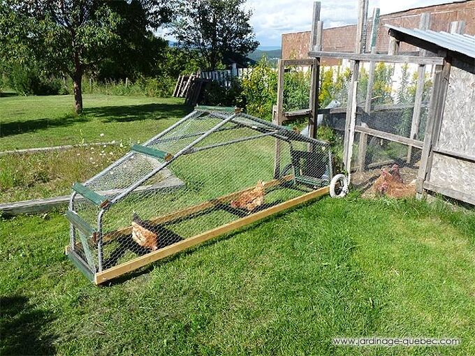 mobile chicken coop how to build a chicken tractor design idea plan, diy, gardening, homesteading, how to, outdoor living, pets animals, Mobile Chicken Coop