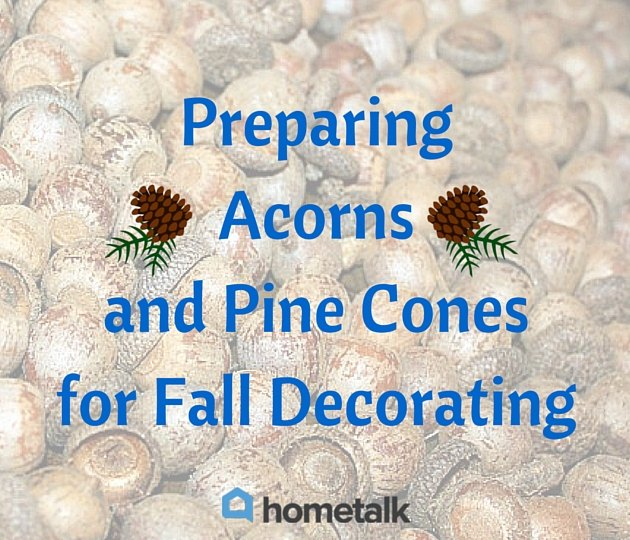 project guide preparing acorns and pine cones for fall decorating, crafts, seasonal holiday decor