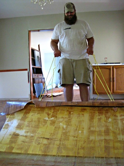 Removing Glue And Adhesive From Hardwood Floors Hometalk