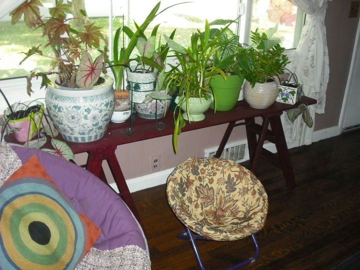 q i am bringing many plants indoors this fall i have few windows, container gardening, gardening, home decor, plant care, used boards on stepstools to build shelves for this window