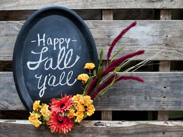 fall chalkboard decor using dollar store supplies, chalkboard paint, crafts, seasonal holiday decor