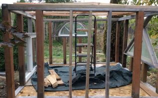 building our chicken coop love shack, homesteading, Next is adding the roof and its supports Fra