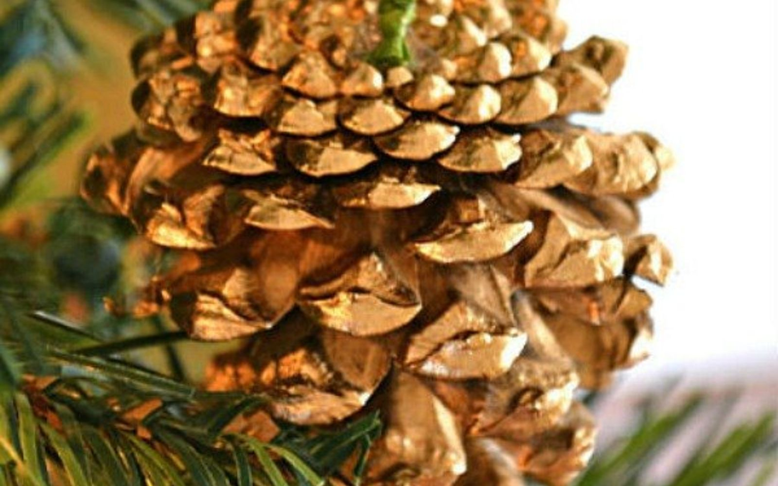 s 13 reasons to rush outside and collect an armful of pine cones, christmas decorations, crafts, repurposing upcycling, seasonal holiday decor, Gilded Designer Ornament