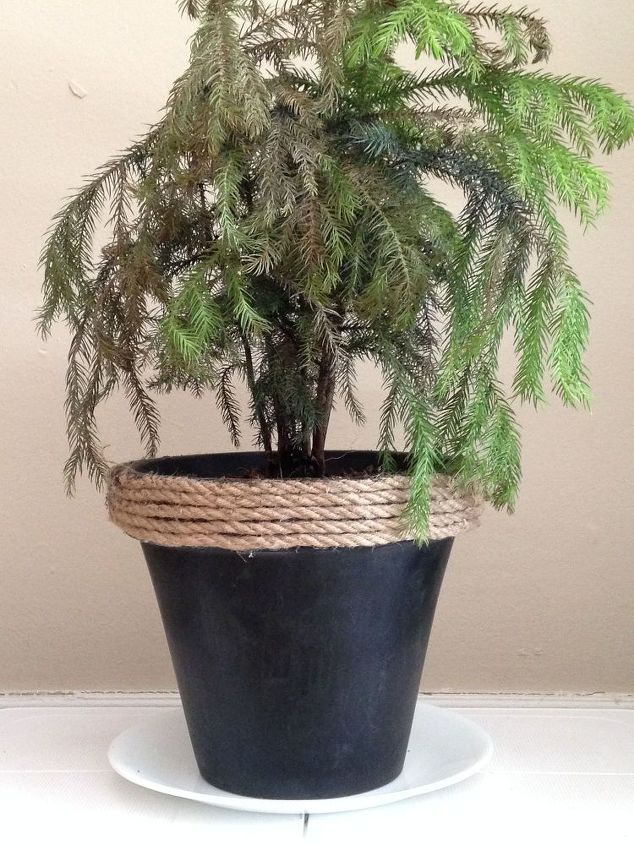 simple and rustic diy chalkboard painted plant pot, chalkboard paint, crafts