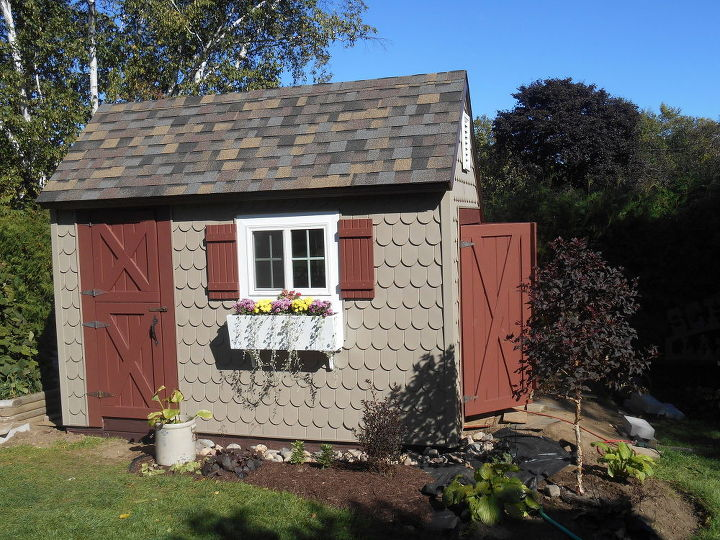 The potting shed my hubby and son built.