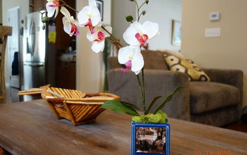 A Little DIY Orchid Box With a Personal Touch of Family Photos