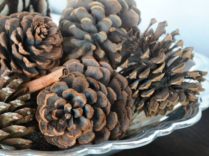 the easy way to make scented pine cones, crafts, seasonal holiday decor