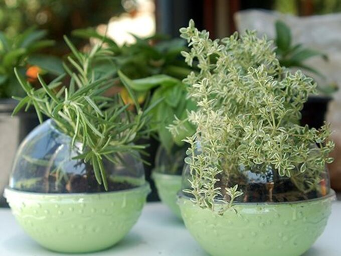 recycled plastic herb pots, crafts, repurposing upcycling