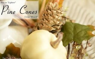 how to lighten pine cones using bleach, crafts, how to, repurposing upcycling, seasonal holiday decor