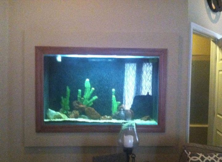 q wall fish tank what to do with it, repurpose unique pieces, repurposing upcycling