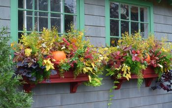 A Quick Fix for Fall Transition Window Boxes!