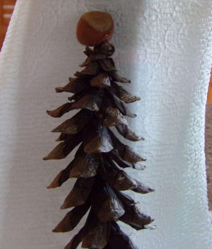 Pinecone and hazelnut.