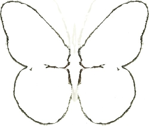 Maple Seed Butterfly Art Crafts Home Decor Wall Draw