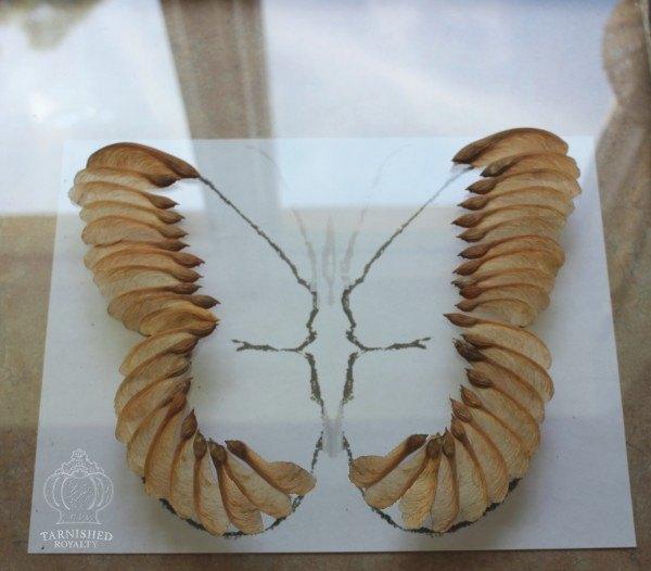 Maple Seed Butterfly Art | Hometalk