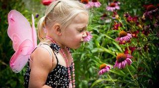 growing garden of love, flowers, gardening, My sweet little flower fairy