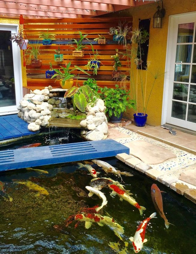 Building a vertical orchid garden wall hometalk for How much to build a koi pond
