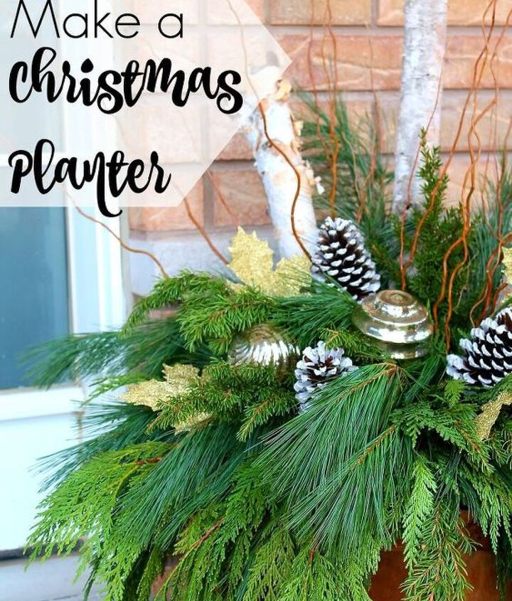 christmas tutorial how to make a christmas planter, christmas decorations, container gardening, gardening, how to, seasonal holiday decor