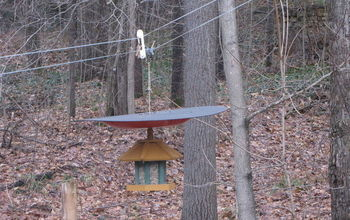 the defeeder make your hanging bird feeder squirrel proof, crafts, outdoor living, pets animals