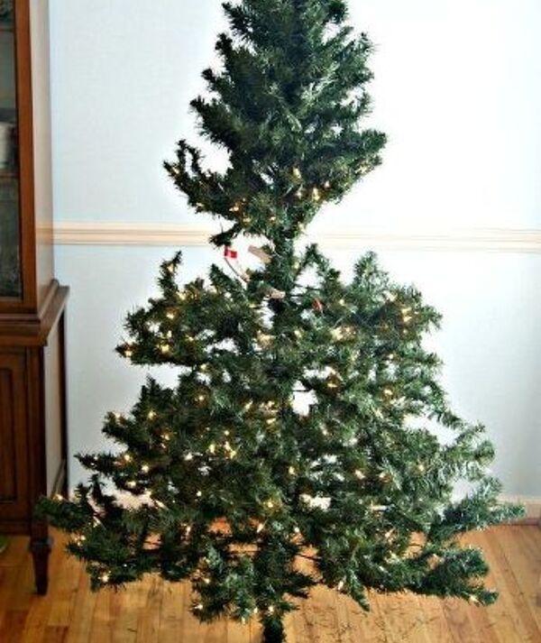 start - Cheap Christmas Trees Near Me