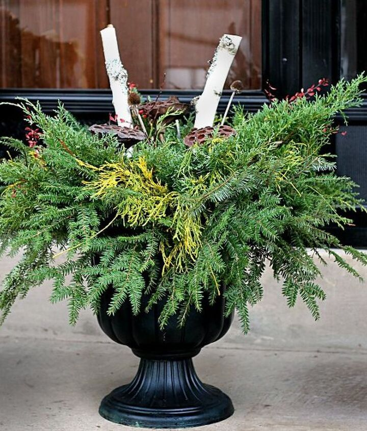 easy diy holiday planter for free, container gardening, gardening