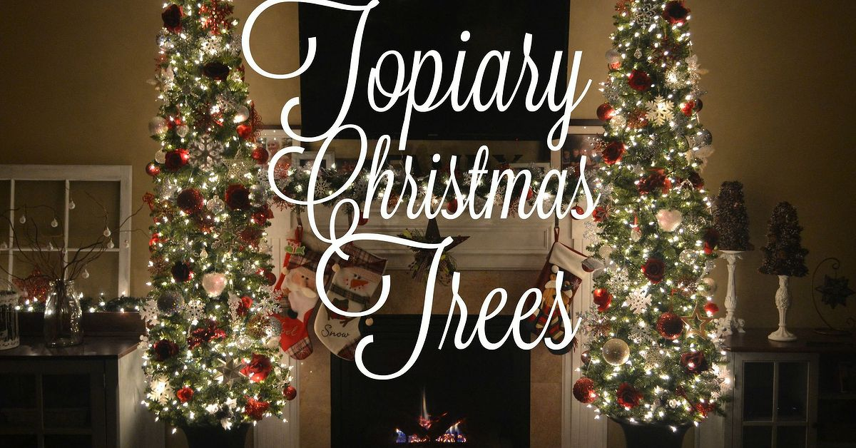 diy potted topiary skinny christmas trees in urns hometalk - Skinny Christmas Tree Decorating Ideas
