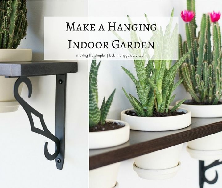 make a hanging indoor garden, container gardening, flowers, gardening, how to, succulents