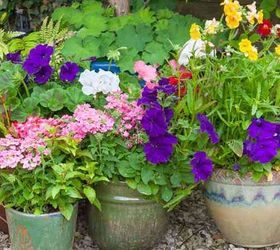 Boost Your Garden With These 8 Fall Planting Ideas, Container Gardening,  Flowers, Gardening