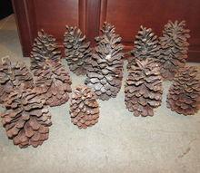 q large pinecones idea s, crafts