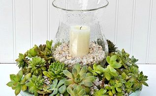 diy succulent candle centerpiece, container gardening, flowers, gardening, succulents