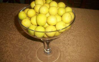 My lemon tree is full of lemons this year.