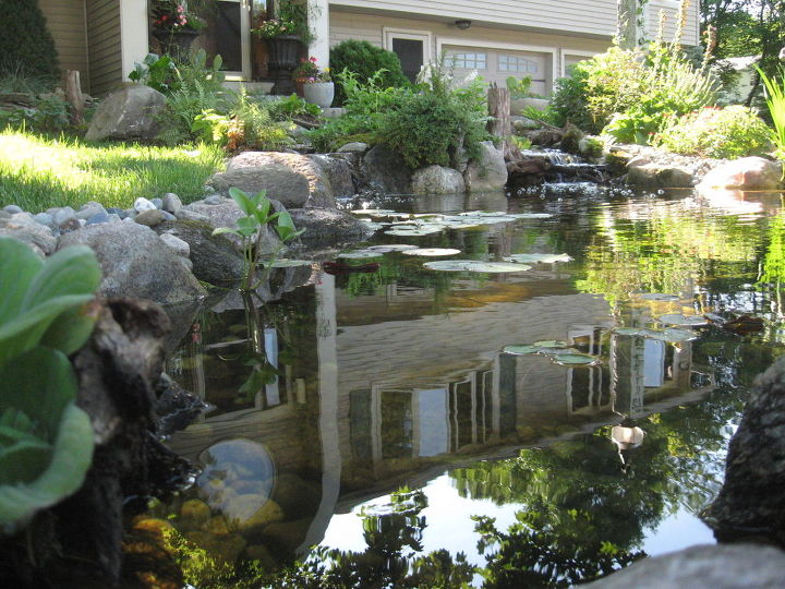 nature scapes ecosystem pond transforms yard adding curbside appeal in nh, flowers, outdoor living, ponds water features, Where there was once only lawn an ecosystem pond created a paradise