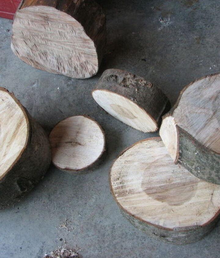 slabs of wood from a fallen tree